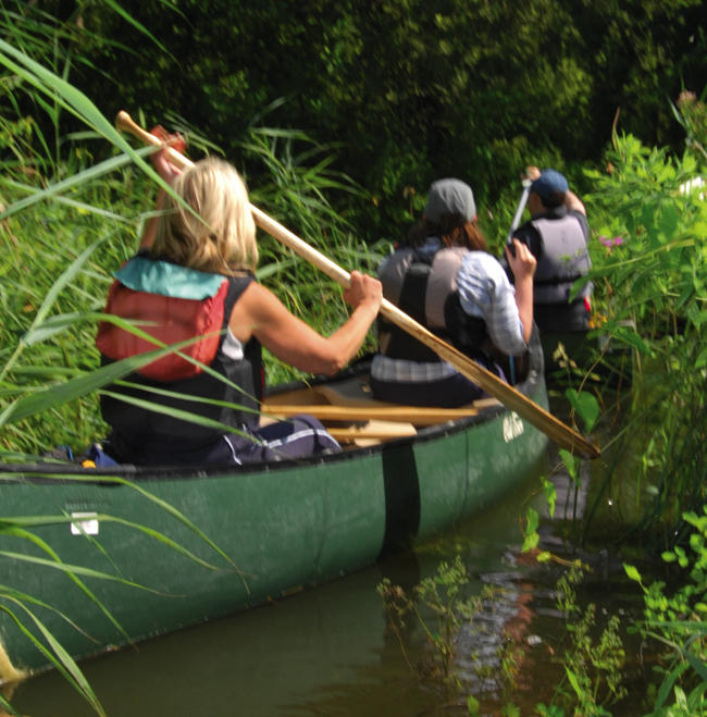 Canoeing in the Broads