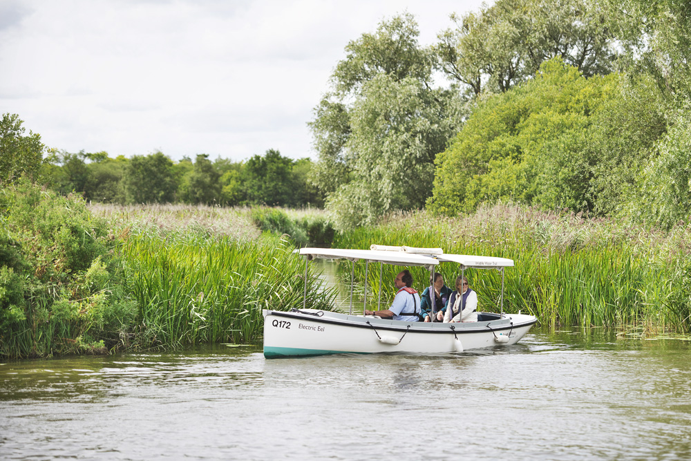 Electric eel boat trip