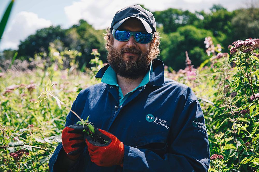 Ranger Matt himalayan balsam